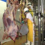 Descubren cartel de la carne en Colombia