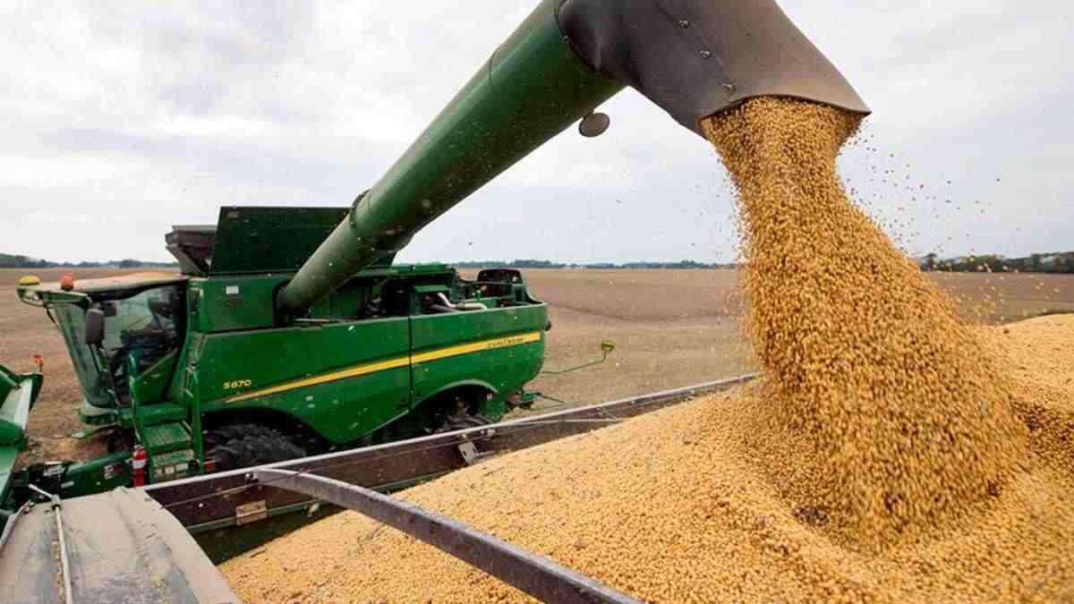 Producción de soja en Brasil subió 10% en octubre